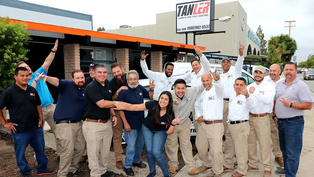 , About, Tanler Termite and Pest Control