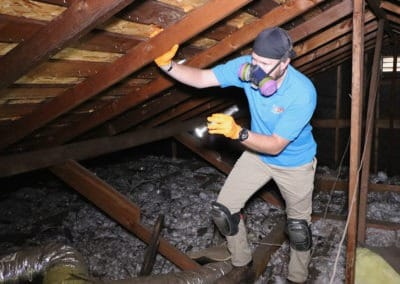 , Termite Inspection, Tanler Termite and Pest Control