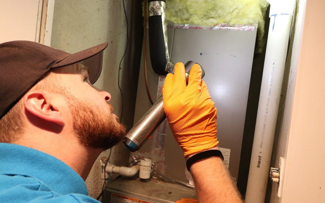 Pest control technician performing a routine inspection